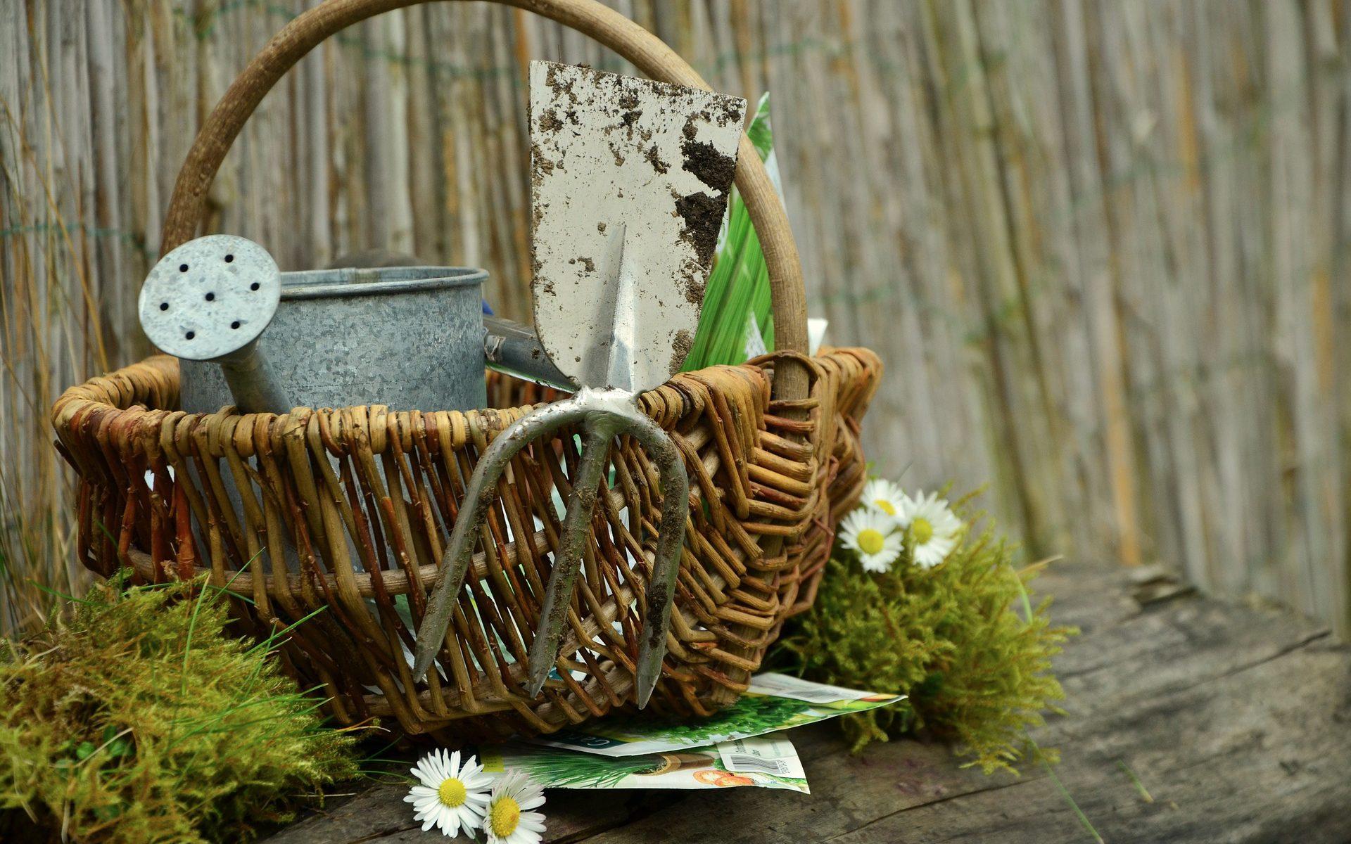 Gartenwerkzeuge im Korb
